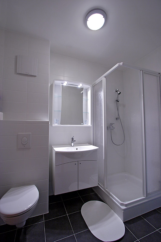 PET II - bathroom with shower, sink and toilet