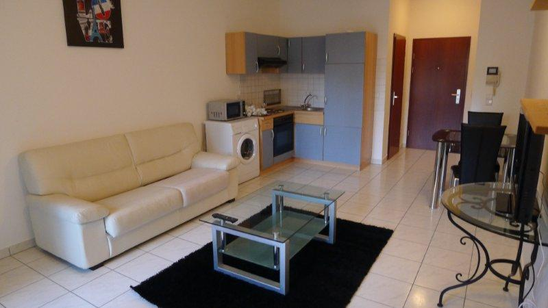 Fully furnished apartment in the Train Station area
